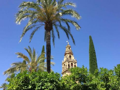Cordoue, une belle Andalouse entre culture, histoire et movida